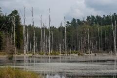 Zbiornik wodny Babcia