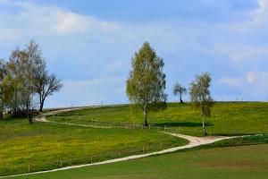 Polne-drogi-Słupy-Dągi-Dywity-53.844552-20.516735
